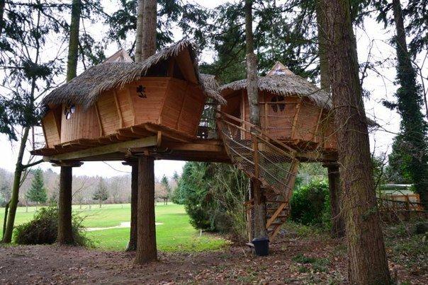 El encanto de dormir en una caba a en el rbol domaine - Cabanas en los arboles ...